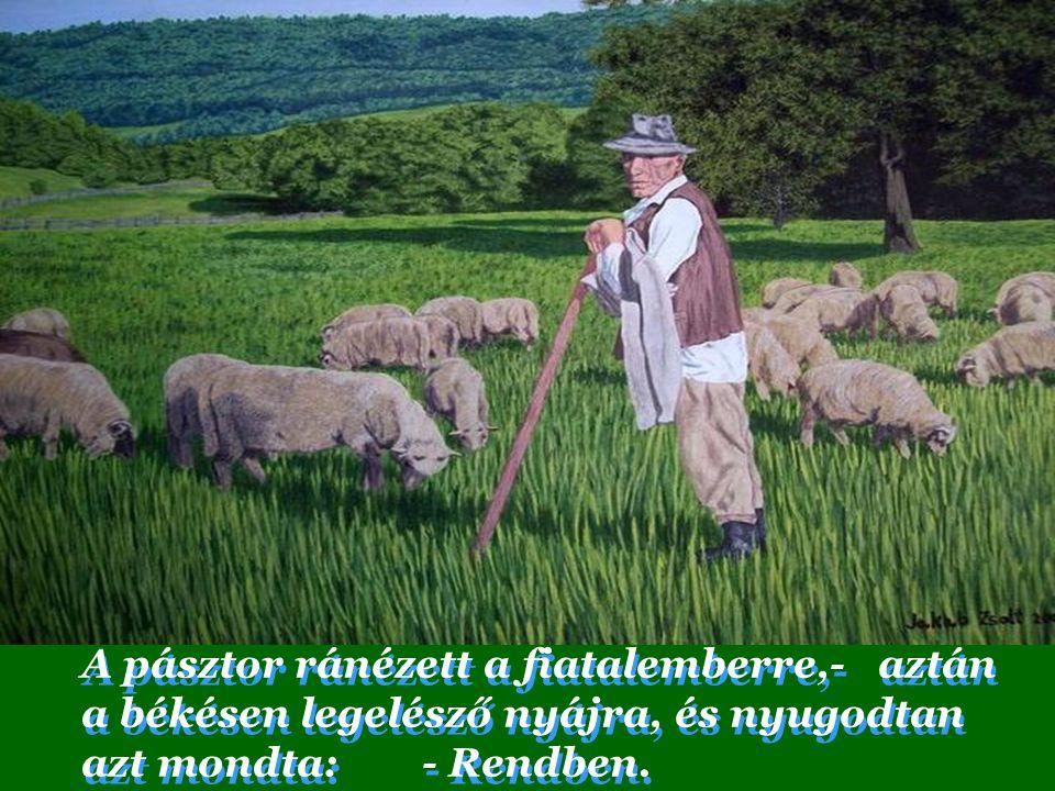 A pásztor ránézett a fiatalemberre,- aztán a békésen legelésző nyájra, és nyugodtan azt mondta: - Rendben.