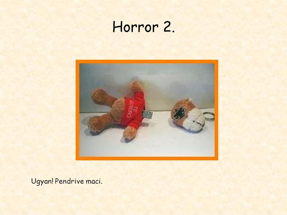 Horror 2. Ugyan! Pendrive maci.