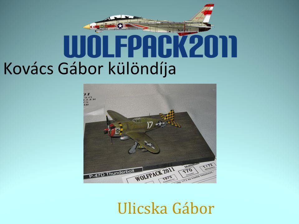 Kovács Gábor különdíja Ulicska Gábor
