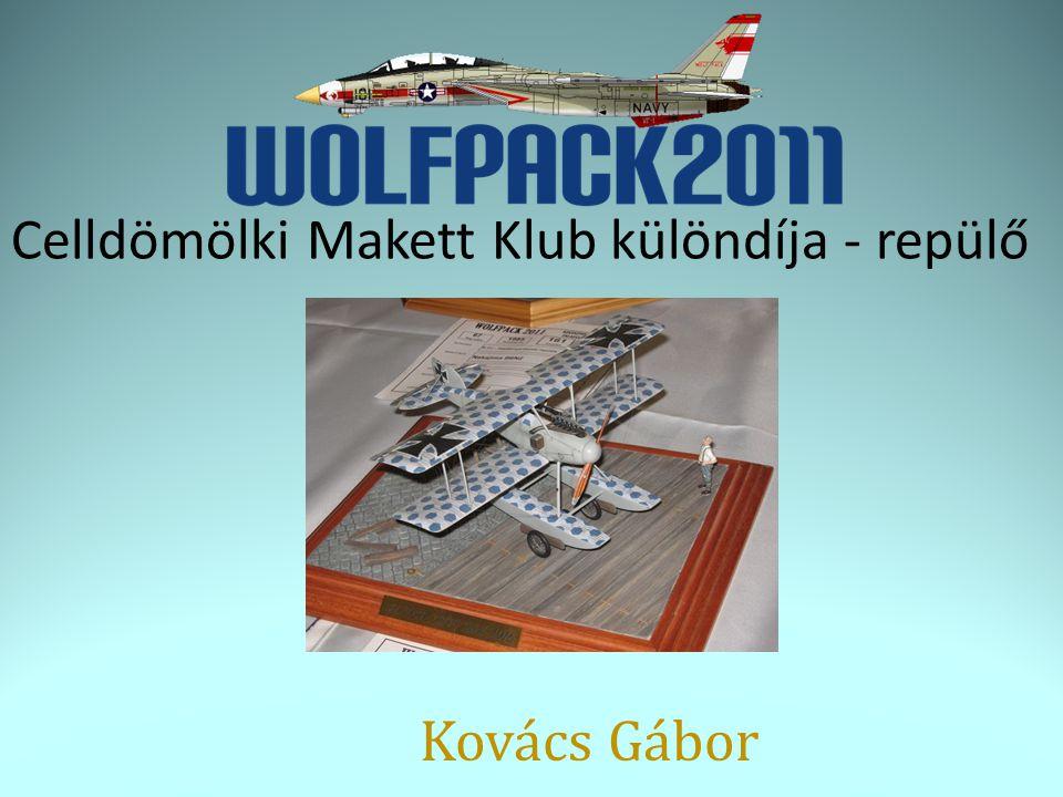 Celldömölki Makett Klub különdíja - repülő Kovács Gábor