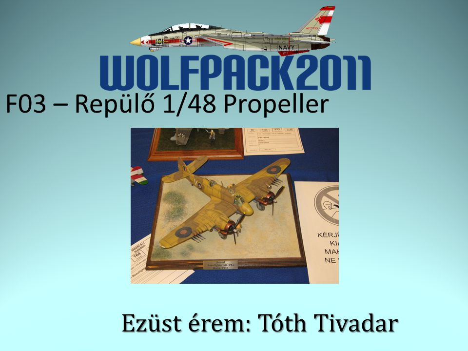 F03 – Repülő 1/48 Propeller Ezüst érem: Tóth Tivadar