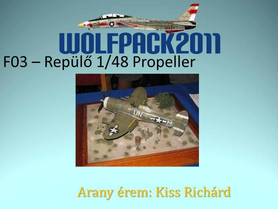 F03 – Repülő 1/48 Propeller Arany érem: Kiss Richárd