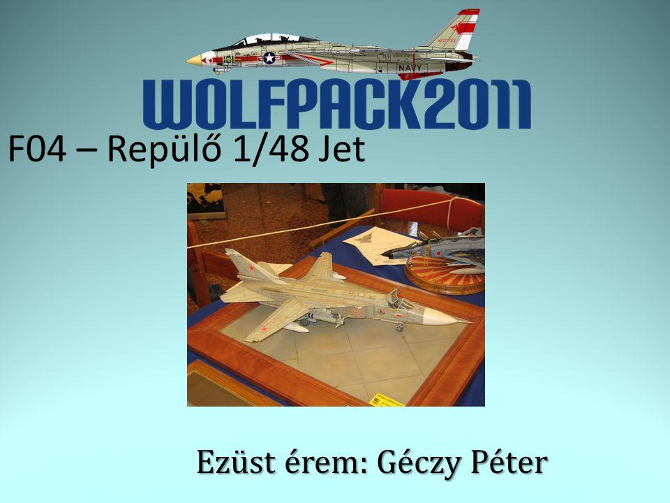 F04 – Repülő 1/48 Jet Ezüst érem: Géczy Péter