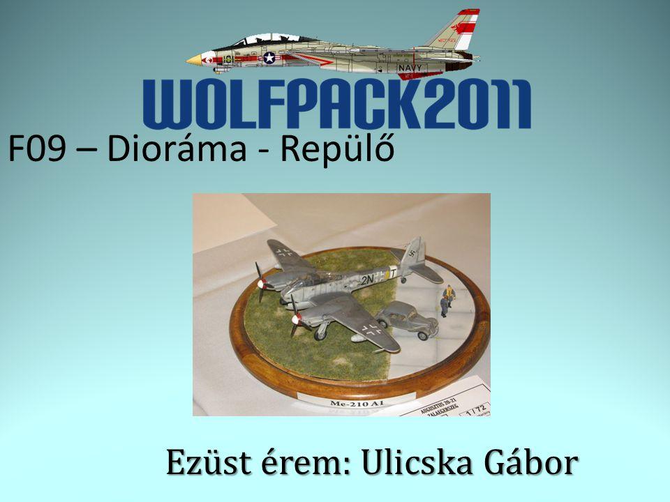 F09 – Dioráma - Repülő Ezüst érem: Ulicska Gábor