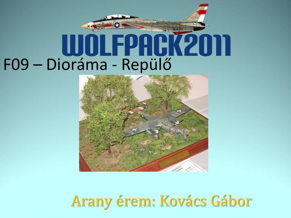 F09 – Dioráma - Repülő Arany érem: Kovács Gábor