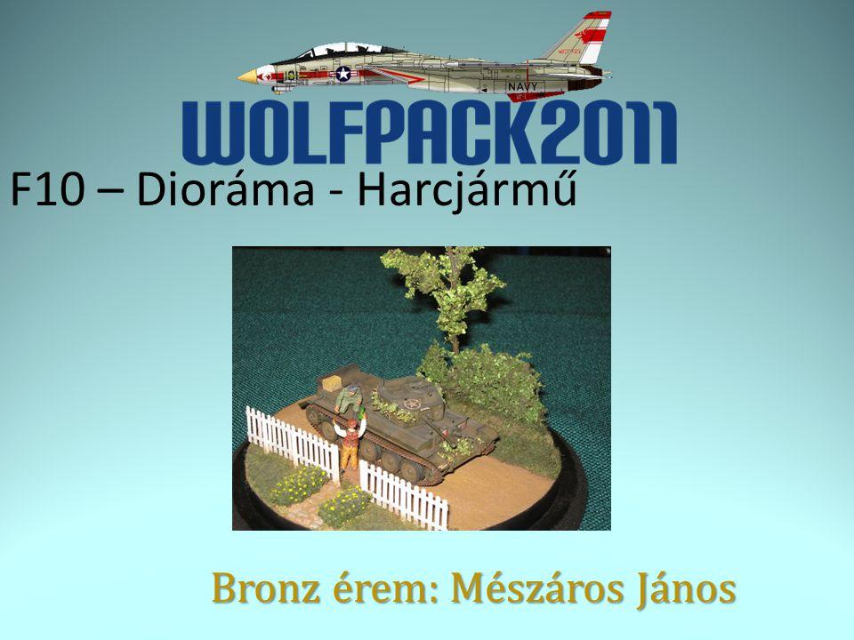 F10 – Dioráma - Harcjármű Bronz érem: Mészáros János