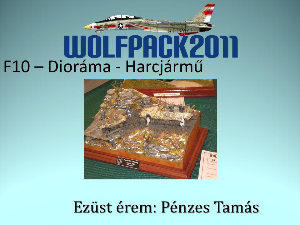 F10 – Dioráma - Harcjármű Ezüst érem: Pénzes Tamás