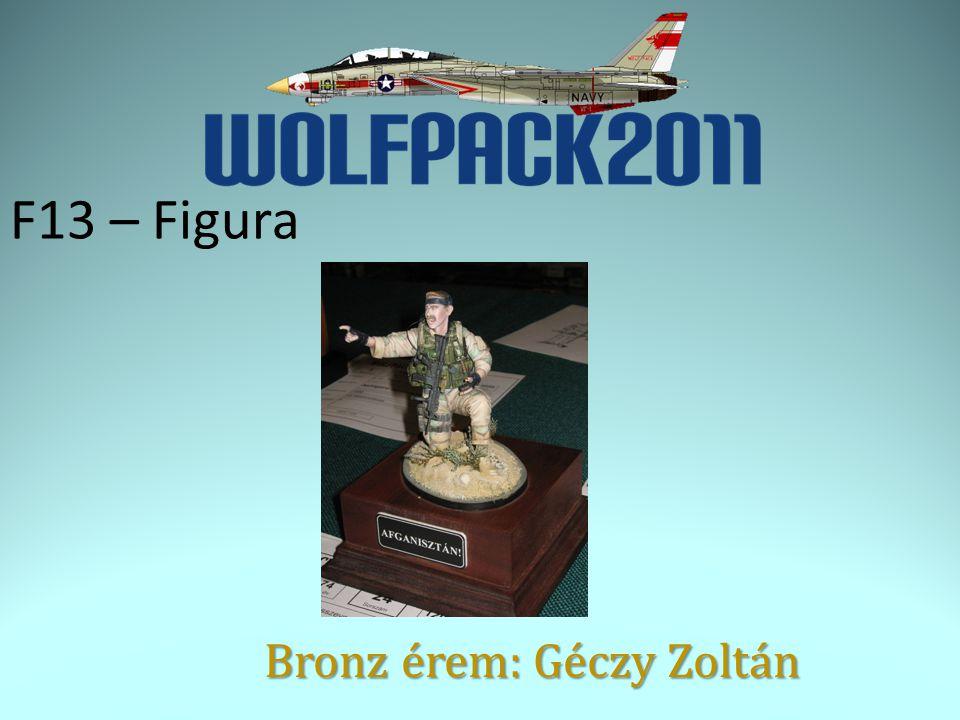F13 – Figura Bronz érem: Géczy Zoltán