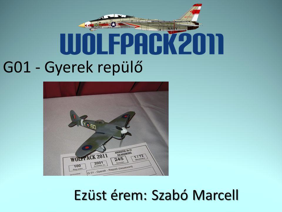 F04 – Repülő 1/48 Jet Arany érem: Szána Szabolcs