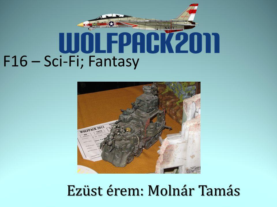F16 – Sci-Fi; Fantasy Ezüst érem: Molnár Tamás