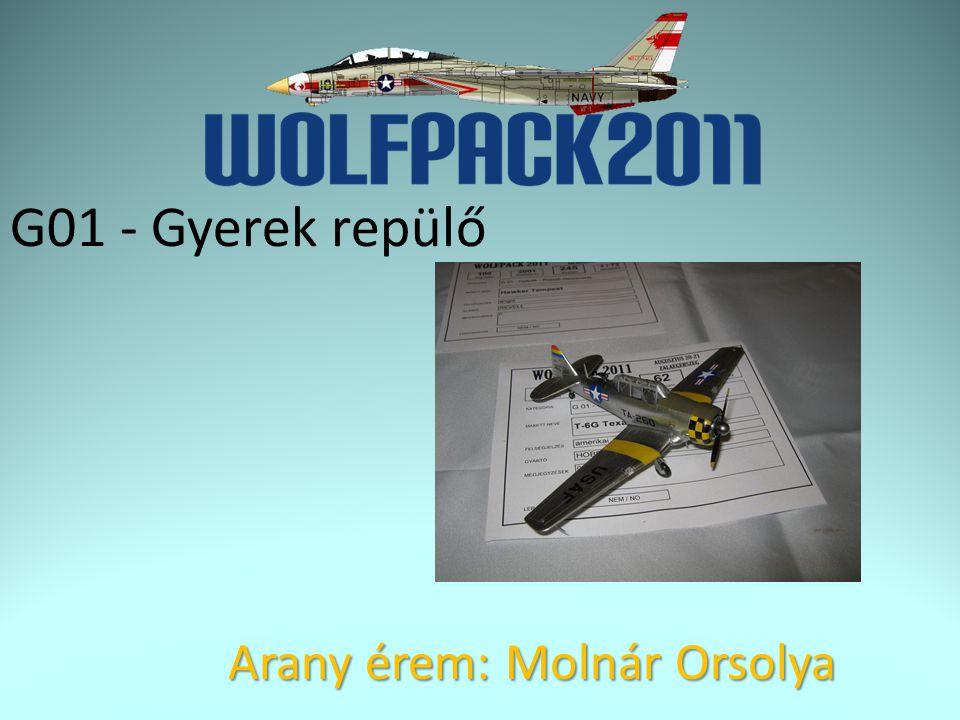 G01 - Gyerek repülő Arany érem: Molnár Orsolya