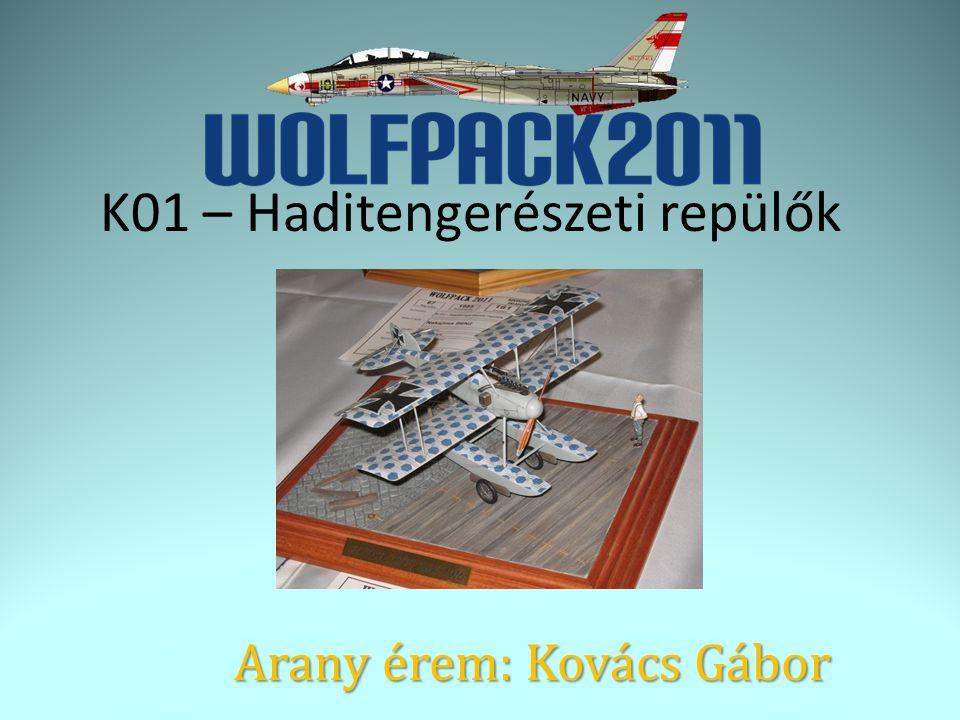 Arany érem: Kovács Gábor K01 – Haditengerészeti repülők