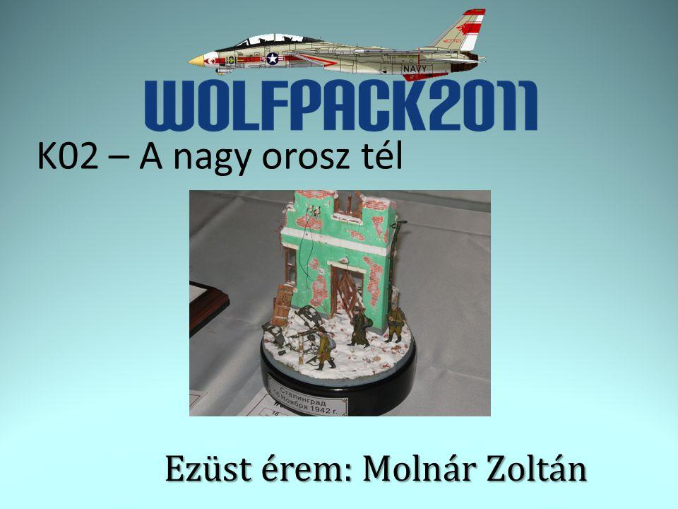 Ezüst érem: Molnár Zoltán K02 – A nagy orosz tél