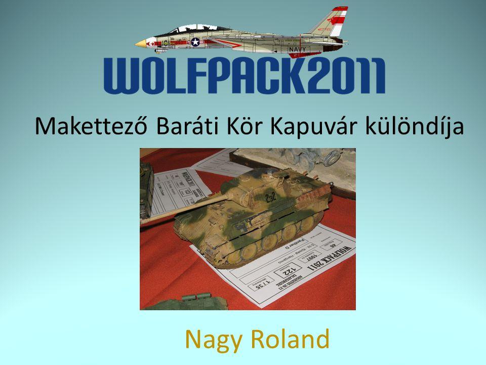 Makettező Baráti Kör Kapuvár különdíja Nagy Roland