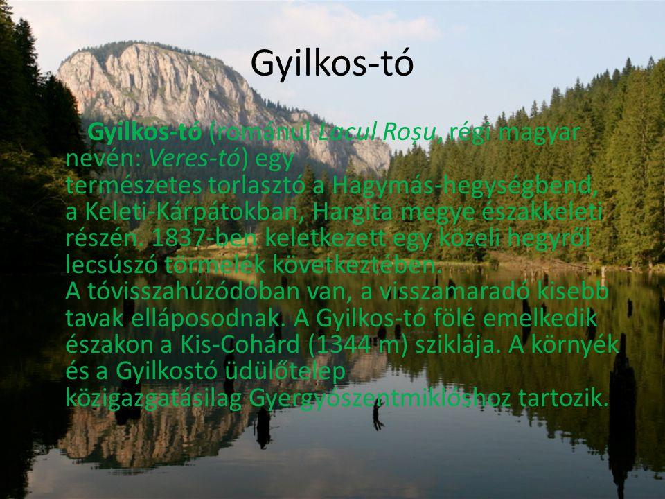 Gyilkos-tó • A Gyilkos-tó (románul Lacul Roșu, régi magyar nevén: Veres-tó) egy természetes torlasztó a Hagymás-hegységbend, a Keleti-Kárpátokban, Hargita megye északkeleti részén.