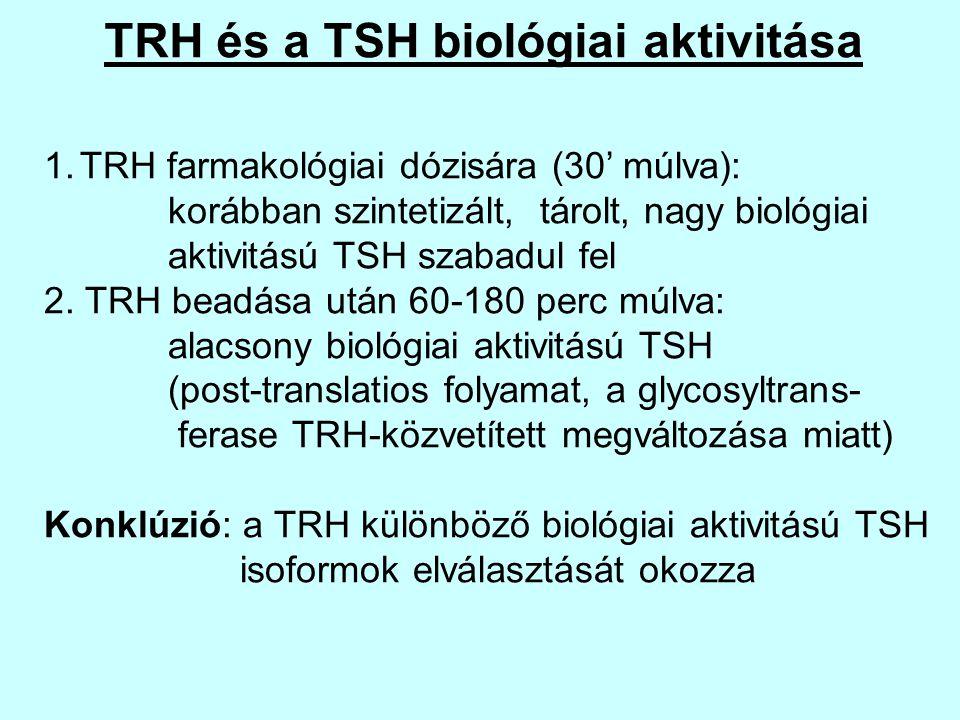 TRH és a TSH biológiai aktivitása 1.TRH farmakológiai dózisára (30' múlva): korábban szintetizált, tárolt, nagy biológiai aktivitású TSH szabadul fel