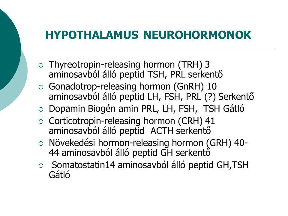 HYPOTHALAMUS NEUROHORMONOK  Thyreotropin-releasing hormon (TRH) 3 aminosavból álló peptid TSH, PRL serkentő  Gonadotrop-releasing hormon (GnRH) 10 aminosavból álló peptid LH, FSH, PRL (?) Serkentő  Dopamin Biogén amin PRL, LH, FSH, TSH Gátló  Corticotropin-releasing hormon (CRH) 41 aminosavból álló peptid ACTH serkentő  Növekedési hormon-releasing hormon (GRH) 40- 44 aminosavból álló peptid GH serkentő  Somatostatin14 aminosavból álló peptid GH,TSH Gátló