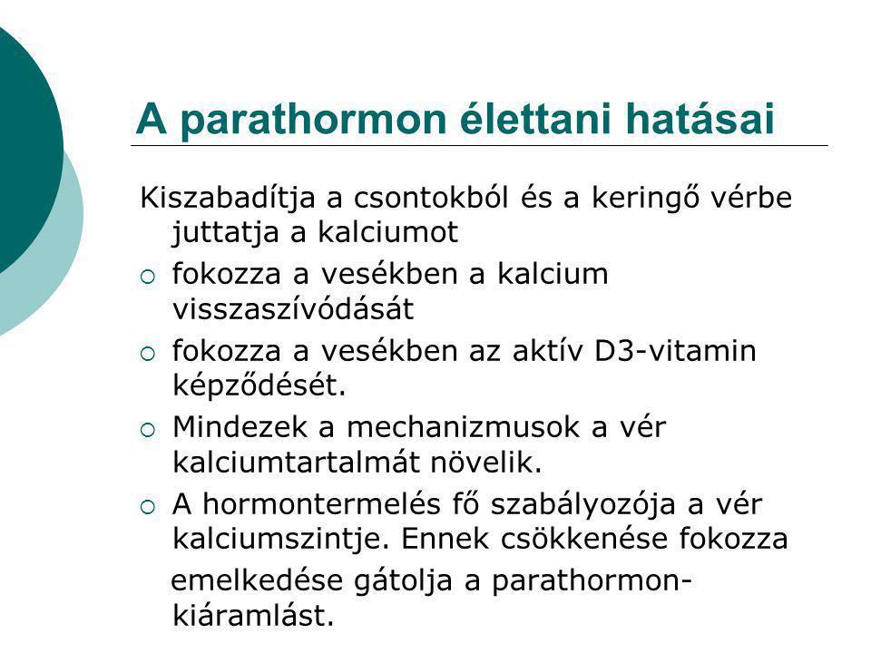A parathormon élettani hatásai Kiszabadítja a csontokból és a keringő vérbe juttatja a kalciumot  fokozza a vesékben a kalcium visszaszívódását  fokozza a vesékben az aktív D3-vitamin képződését.