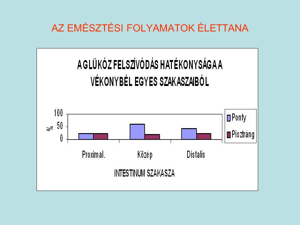 A fehérje emésztés enzimjei Fehérjebontó enzimek termelődésének helye: Gyomor, pancreas, intestinum egysejtű mirigyei, pylorus függelék Proteáz aktivitás függ: vízhőmérséklettől (47-66 % eltérés) PEPSZIN – széles spektrumu savanyú proteáz Bontja: polipeptid láncot (hidrofób maradékot képez) pH optimuma: 1,8 – 2,2 hőmérséklet optimuma: kevéssé hőmérséklet függő