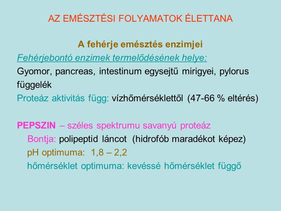 A fehérje emésztés enzimjei Fehérjebontó enzimek termelődésének helye: Gyomor, pancreas, intestinum egysejtű mirigyei, pylorus függelék Proteáz aktivi