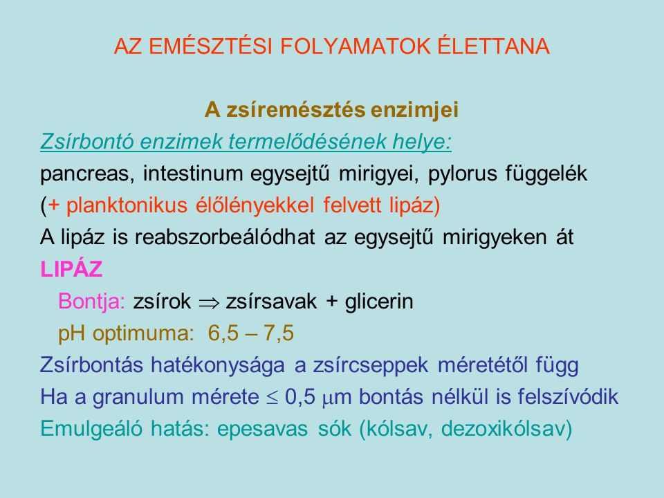 A zsíremésztés enzimjei Zsírbontó enzimek termelődésének helye: pancreas, intestinum egysejtű mirigyei, pylorus függelék (+ planktonikus élőlényekkel