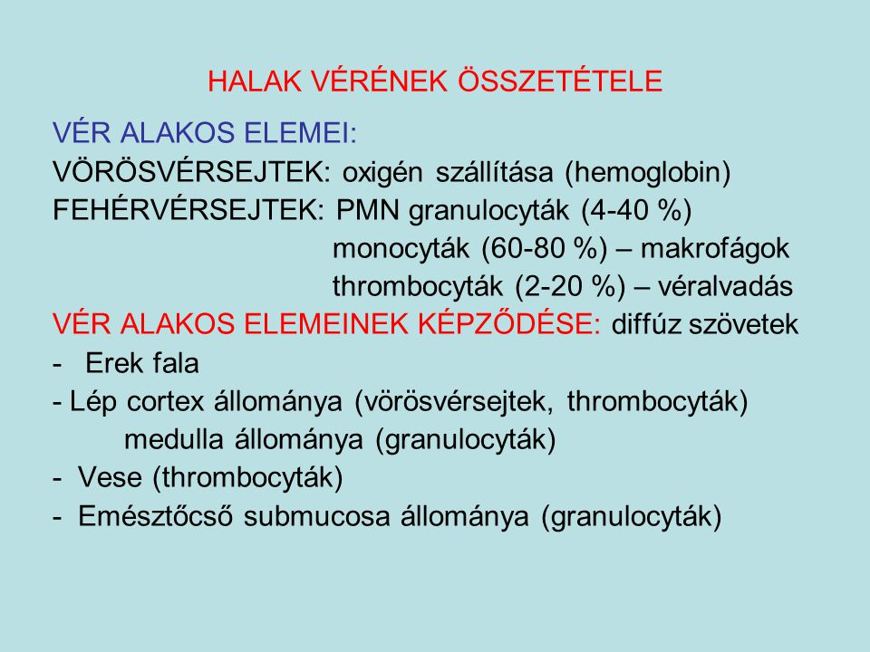 HALAK VÉRÉNEK ÖSSZETÉTELE VÉR ALAKOS ELEMEI: VÖRÖSVÉRSEJTEK: oxigén szállítása (hemoglobin) FEHÉRVÉRSEJTEK: PMN granulocyták (4-40 %) monocyták (60-80