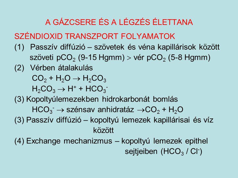 A GÁZCSERE ÉS A LÉGZÉS ÉLETTANA SZÉNDIOXID TRANSZPORT FOLYAMATOK (1)Passzív diffúzió – szövetek és véna kapillárisok között szöveti pCO 2 (9-15 Hgmm)