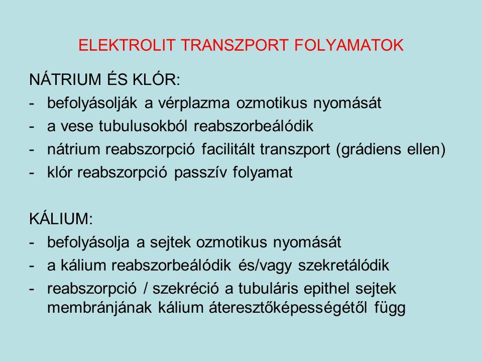 ELEKTROLIT TRANSZPORT FOLYAMATOK NÁTRIUM ÉS KLÓR: -befolyásolják a vérplazma ozmotikus nyomását -a vese tubulusokból reabszorbeálódik -nátrium reabszo