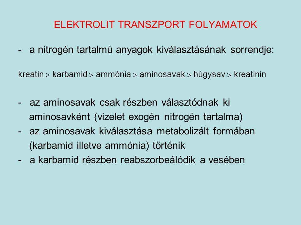 ELEKTROLIT TRANSZPORT FOLYAMATOK -a nitrogén tartalmú anyagok kiválasztásának sorrendje: kreatin  karbamid  ammónia  aminosavak  húgysav  kreatin