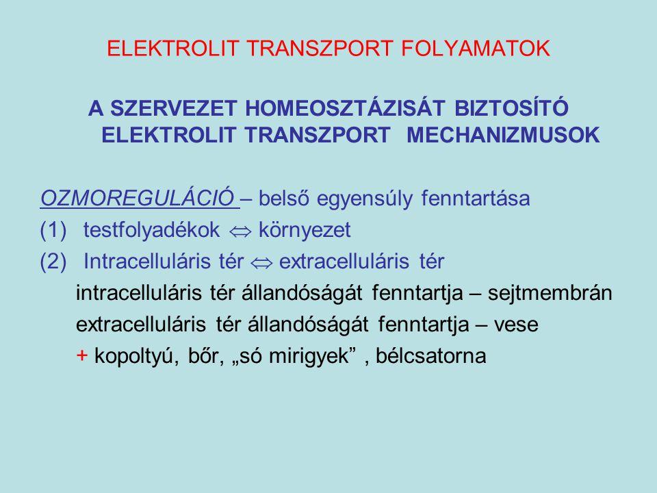 ELEKTROLIT TRANSZPORT FOLYAMATOK A SZERVEZET HOMEOSZTÁZISÁT BIZTOSÍTÓ ELEKTROLIT TRANSZPORT MECHANIZMUSOK OZMOREGULÁCIÓ – belső egyensúly fenntartása