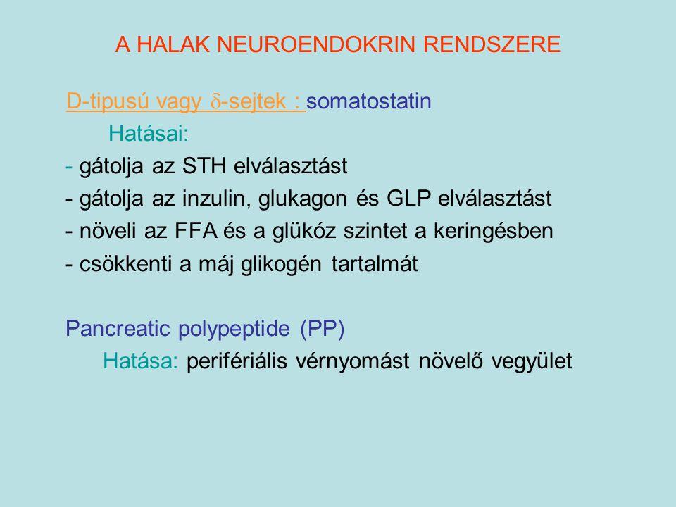 A HALAK NEUROENDOKRIN RENDSZERE D-tipusú vagy  -sejtek : somatostatin Hatásai: - gátolja az STH elválasztást - gátolja az inzulin, glukagon és GLP el