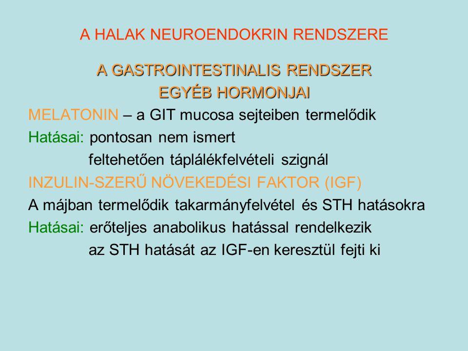 A HALAK NEUROENDOKRIN RENDSZERE A GASTROINTESTINALIS RENDSZER EGYÉB HORMONJAI MELATONIN – a GIT mucosa sejteiben termelődik Hatásai: pontosan nem isme