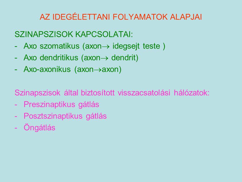 AZ IDEGÉLETTANI FOLYAMATOK ALAPJAI SZINAPSZISOK KAPCSOLATAI: -Axo szomatikus (axon  idegsejt teste ) -Axo dendritikus (axon  dendrit) -Axo-axonikus