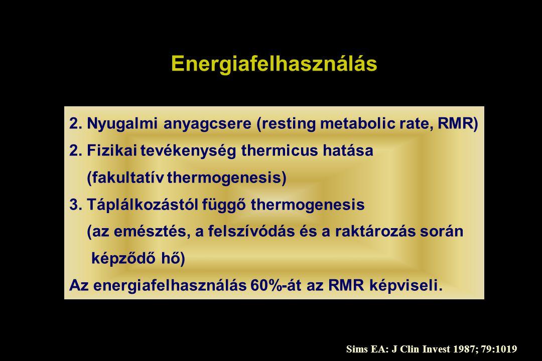 Energiafelhasználás 2. Nyugalmi anyagcsere (resting metabolic rate, RMR) 2. Fizikai tevékenység thermicus hatása (fakultatív thermogenesis) 3. Táplálk