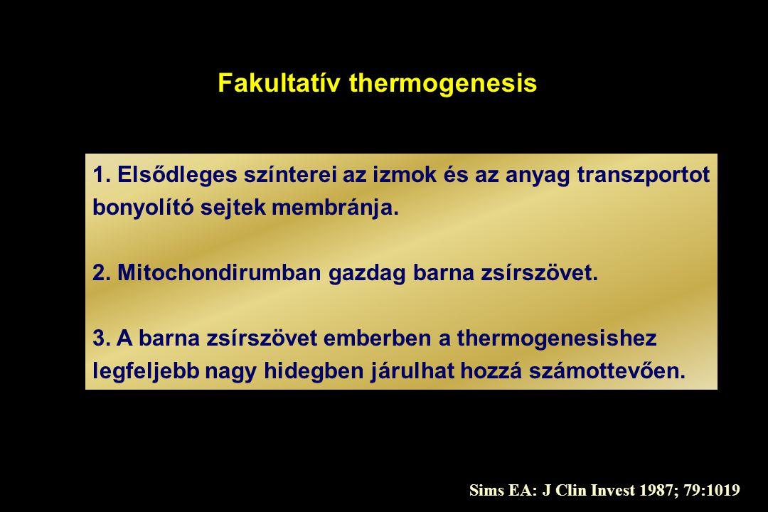 Fakultatív thermogenesis 1. Elsődleges színterei az izmok és az anyag transzportot bonyolító sejtek membránja. 2. Mitochondirumban gazdag barna zsírsz