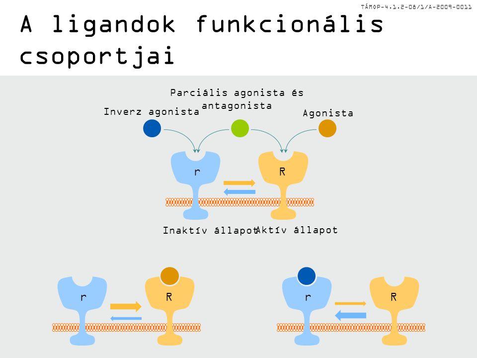 TÁMOP-4.1.2-08/1/A-2009-0011 Receptor-ligand interakció Receptor tulajdonságokLigandok A ligand a 7 transzmembrán hélixek core régiójához kötődik 11-c
