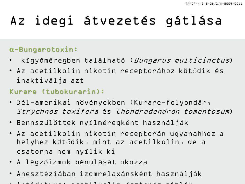 TÁMOP-4.1.2-08/1/A-2009-0011 Az idegi átvezetés gátlása  -Bungarotoxin: • kígyóméregben található (Bungarus multicinctus) •Az acetilkolin nikotin rec