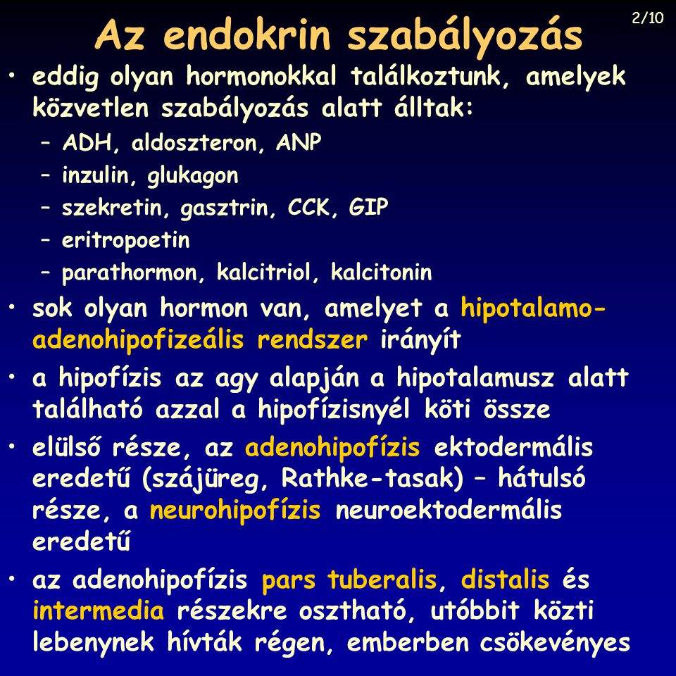 Az endokrin szabályozás •eddig olyan hormonokkal találkoztunk, amelyek közvetlen szabályozás alatt álltak: –ADH, aldoszteron, ANP –inzulin, glukagon –szekretin, gasztrin, CCK, GIP –eritropoetin –parathormon, kalcitriol, kalcitonin •sok olyan hormon van, amelyet a hipotalamo- adenohipofizeális rendszer irányít •a hipofízis az agy alapján a hipotalamusz alatt található azzal a hipofízisnyél köti össze •elülső része, az adenohipofízis ektodermális eredetű (szájüreg, Rathke-tasak) – hátulsó része, a neurohipofízis neuroektodermális eredetű •az adenohipofízis pars tuberalis, distalis és intermedia részekre osztható, utóbbit közti lebenynek hívták régen, emberben csökevényes 2/10