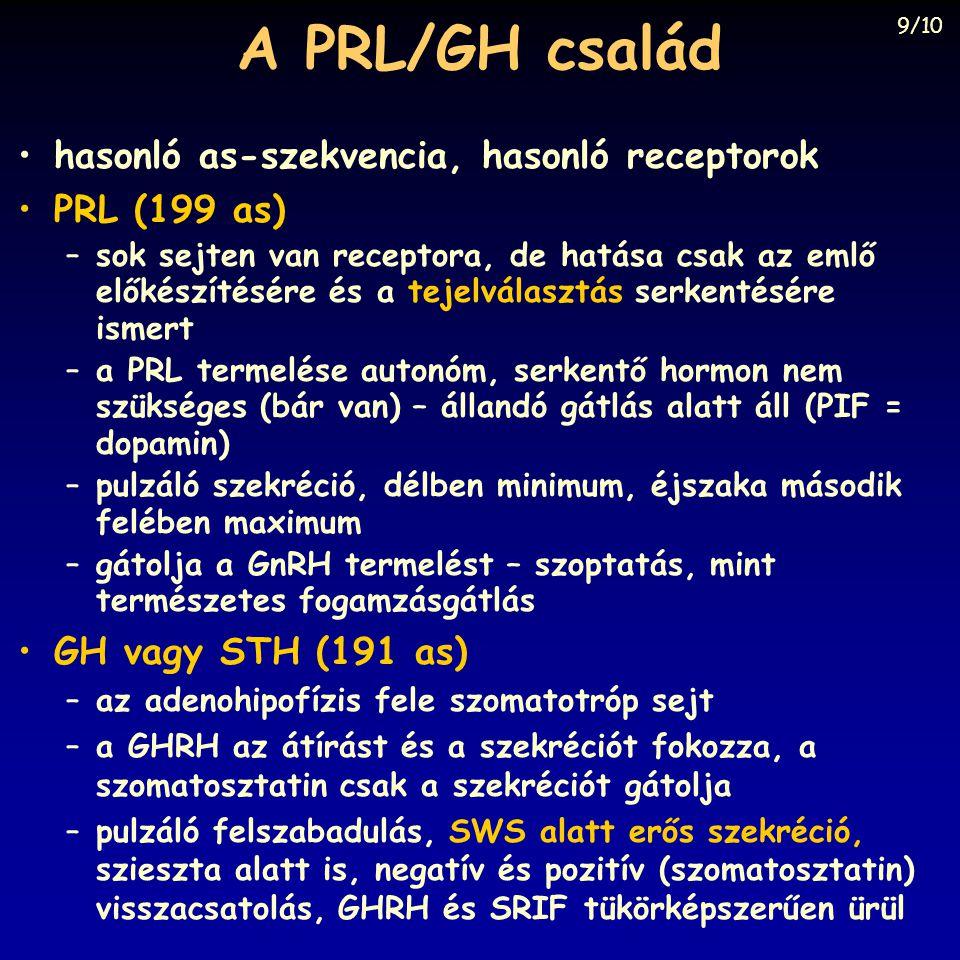 A PRL/GH család •hasonló as-szekvencia, hasonló receptorok •PRL (199 as) –sok sejten van receptora, de hatása csak az emlő előkészítésére és a tejelválasztás serkentésére ismert –a PRL termelése autonóm, serkentő hormon nem szükséges (bár van) – állandó gátlás alatt áll (PIF = dopamin) –pulzáló szekréció, délben minimum, éjszaka második felében maximum –gátolja a GnRH termelést – szoptatás, mint természetes fogamzásgátlás •GH vagy STH (191 as) –az adenohipofízis fele szomatotróp sejt –a GHRH az átírást és a szekréciót fokozza, a szomatosztatin csak a szekréciót gátolja –pulzáló felszabadulás, SWS alatt erős szekréció, szieszta alatt is, negatív és pozitív (szomatosztatin) visszacsatolás, GHRH és SRIF tükörképszerűen ürül 9/10