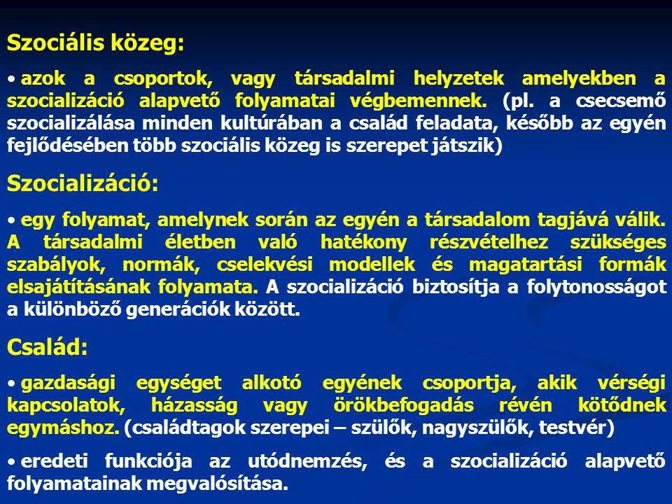 Szociális közeg: • azok a csoportok, vagy társadalmi helyzetek amelyekben a szocializáció alapvető folyamatai végbemennek. (pl. a csecsemő szocializál