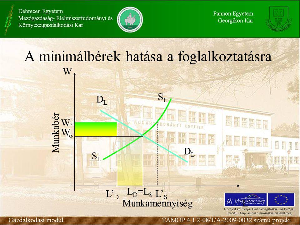 A minimálbérek hatása a foglalkoztatásra Munkabér MunkamennyiségL W SLSL SLSL DLDL DLDL L D =L S WoWo L' D W'W' L' S
