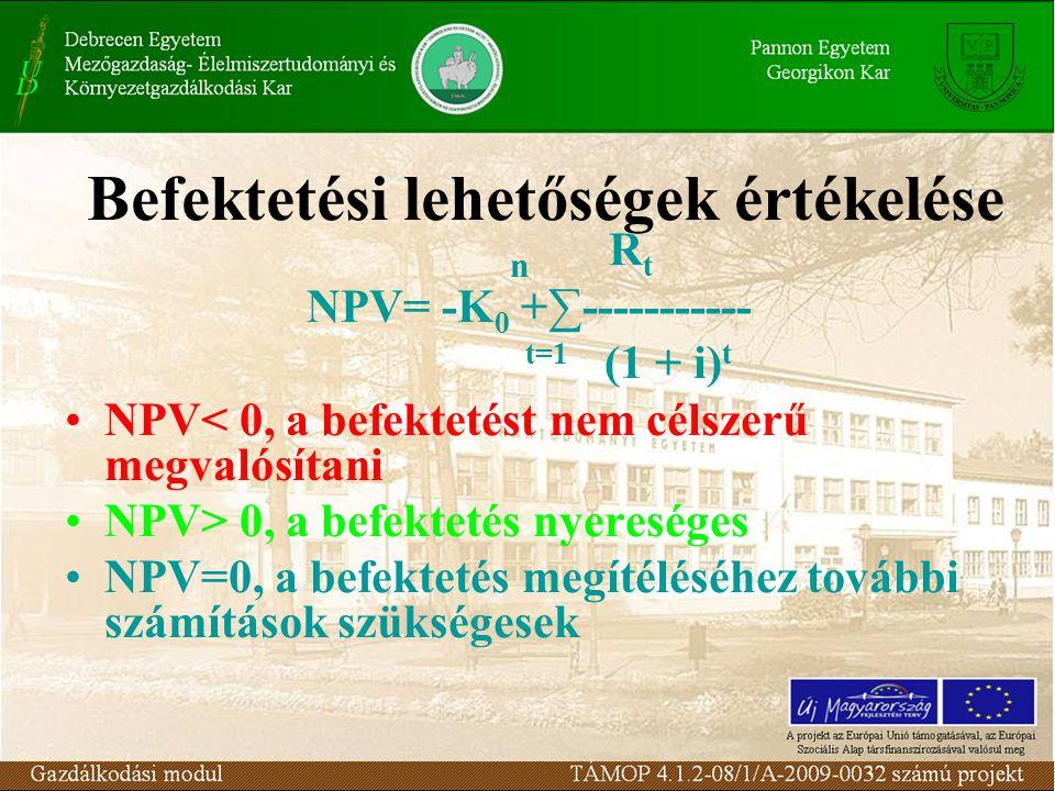 Befektetési lehetőségek értékelése n R t NPV= -K 0 +∑----------- t=1 (1 + i) t •NPV< 0, a befektetést nem célszerű megvalósítani •NPV> 0, a befektetés