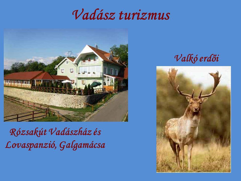 Vadász turizmus Rózsakút Vadászház és Lovaspanzió, Galgamácsa Valkó erdői