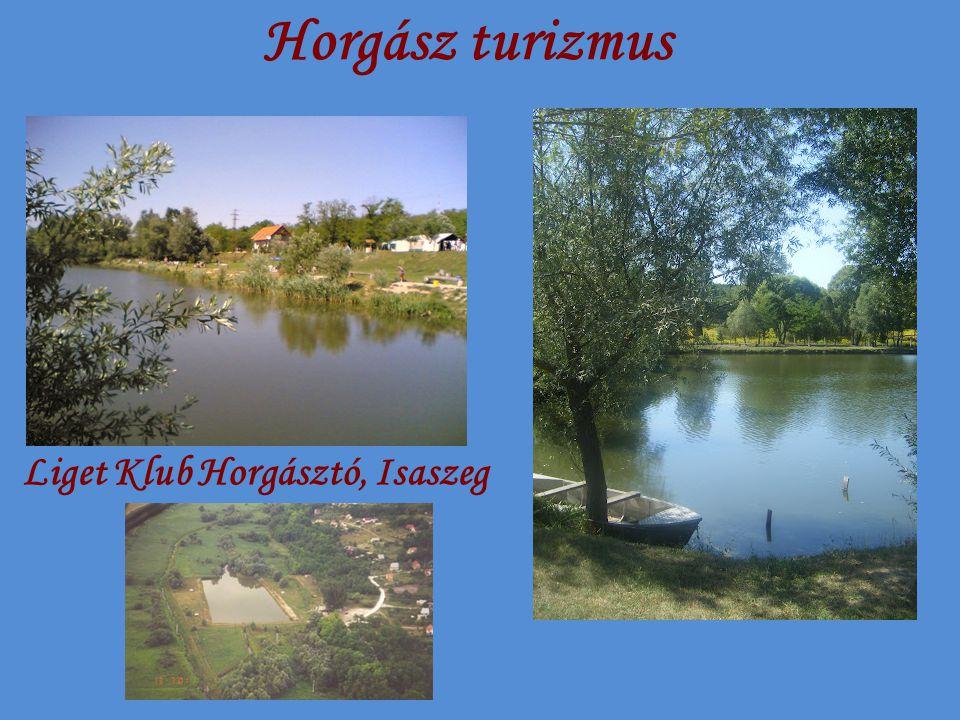 Horgász turizmus Liget Klub Horgásztó, Isaszeg