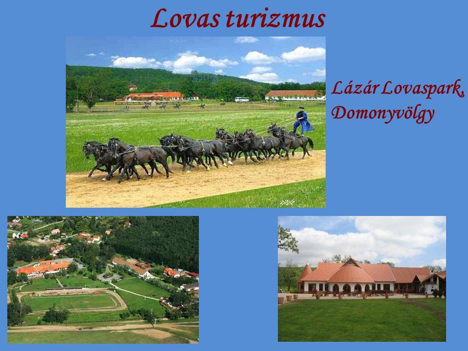 Lovas turizmus Lázár Lovaspark, Domonyvölgy