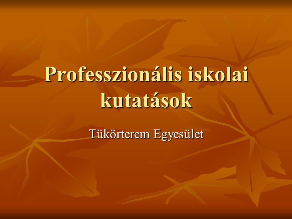 Professzionális iskolai kutatások Tükörterem Egyesület