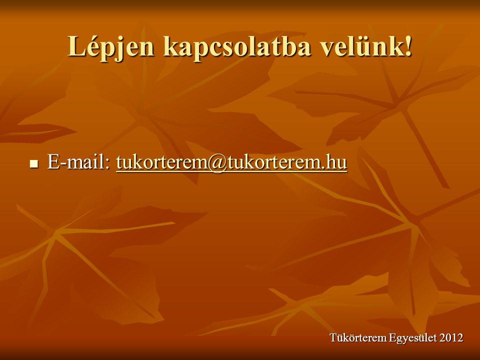 Lépjen kapcsolatba velünk!  E-mail: tukorterem@tukorterem.hu tukorterem@tukorterem.hu Tükörterem Egyesület 2012