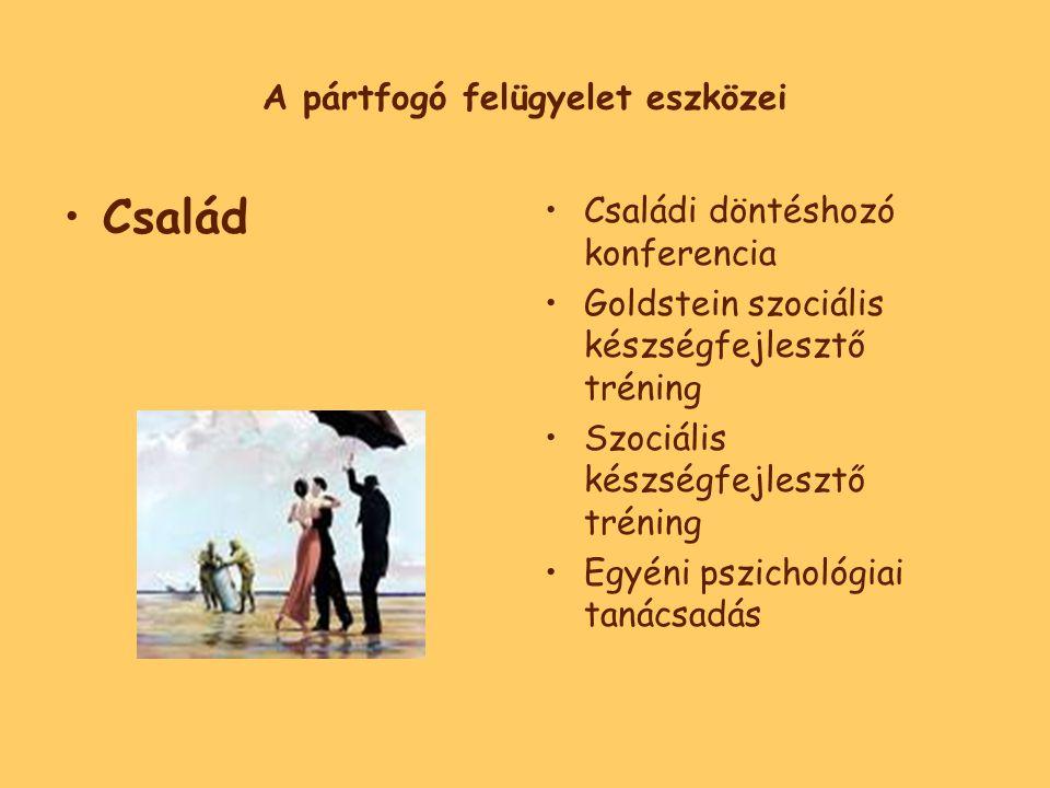 A pártfogó felügyelet eszközei •Család •Családi döntéshozó konferencia •Goldstein szociális készségfejlesztő tréning •Szociális készségfejlesztő tréning •Egyéni pszichológiai tanácsadás