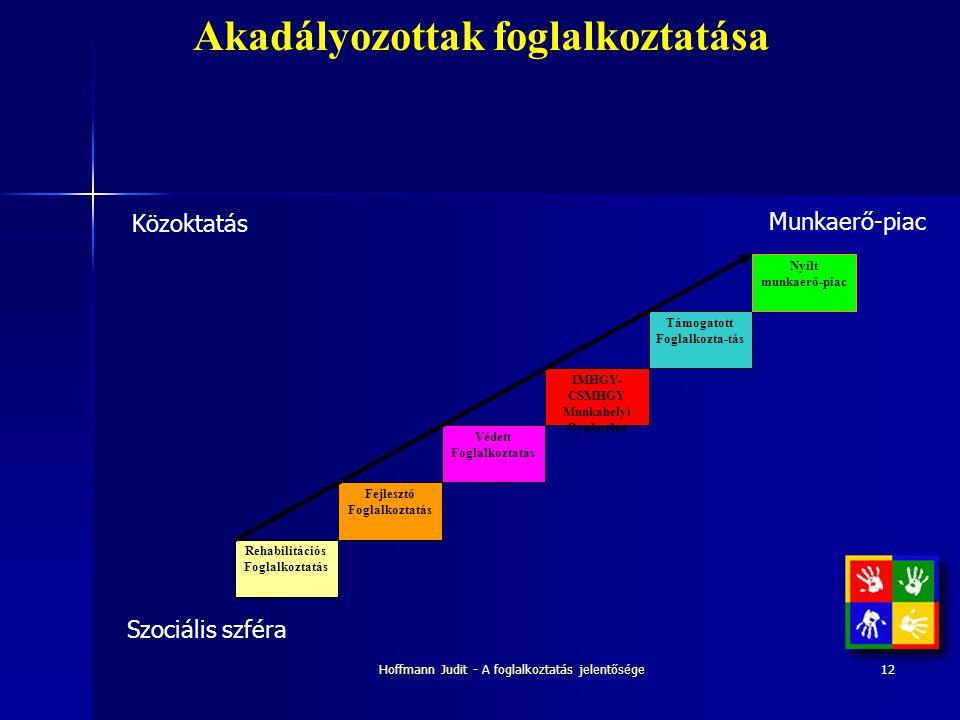 Hoffmann Judit - A foglalkoztatás jelentősége12 Akadályozottak foglalkoztatása Rehabilitációs Foglalkoztatás Védett Foglalkoztatás Fejlesztő Foglalkoz