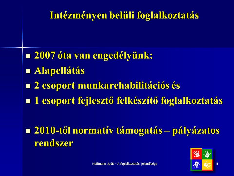 Hoffmann Judit - A foglalkoztatás jelentősége5 Intézményen belüli foglalkoztatás  2007 óta van engedélyünk:  Alapellátás  2 csoport munkarehabilitá